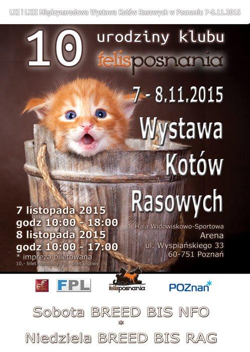Międzynarodowa Wystawa Kotów Rasowych Poznań 07-08.11.2015r