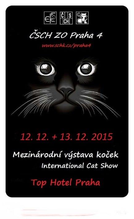 Międzynarodowa Wystawa Kotów Rasowych Praga 12-13.12.2015r