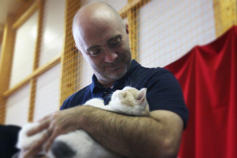 XIX i XX Międzynarodowa Wystawa Kotów Rasowych Rybnik 22-23.10.2016r