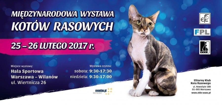 Międzynarodowa Wystawa Kotów Rasowych Warszawa 25-26.02.2017r